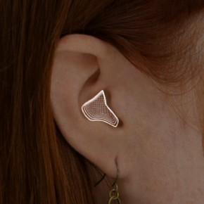 3D ear scan